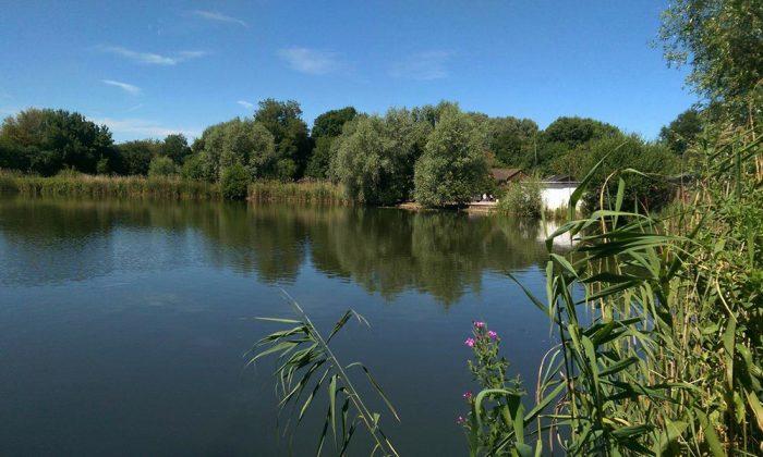 Vermuyden lake - Fenland Fisheries Carp Fishing