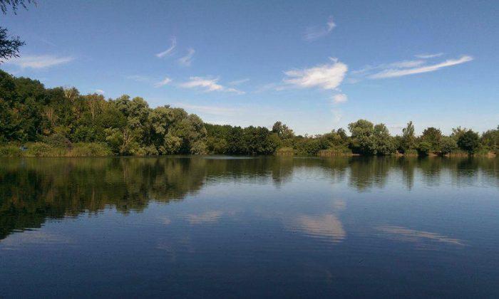 Willow lake - Fenland Fisheries Carp Fishing