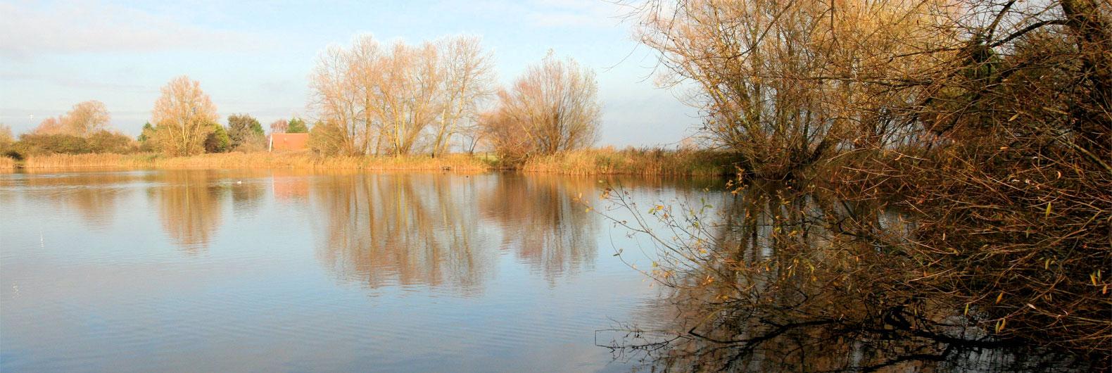 willow-lake-01
